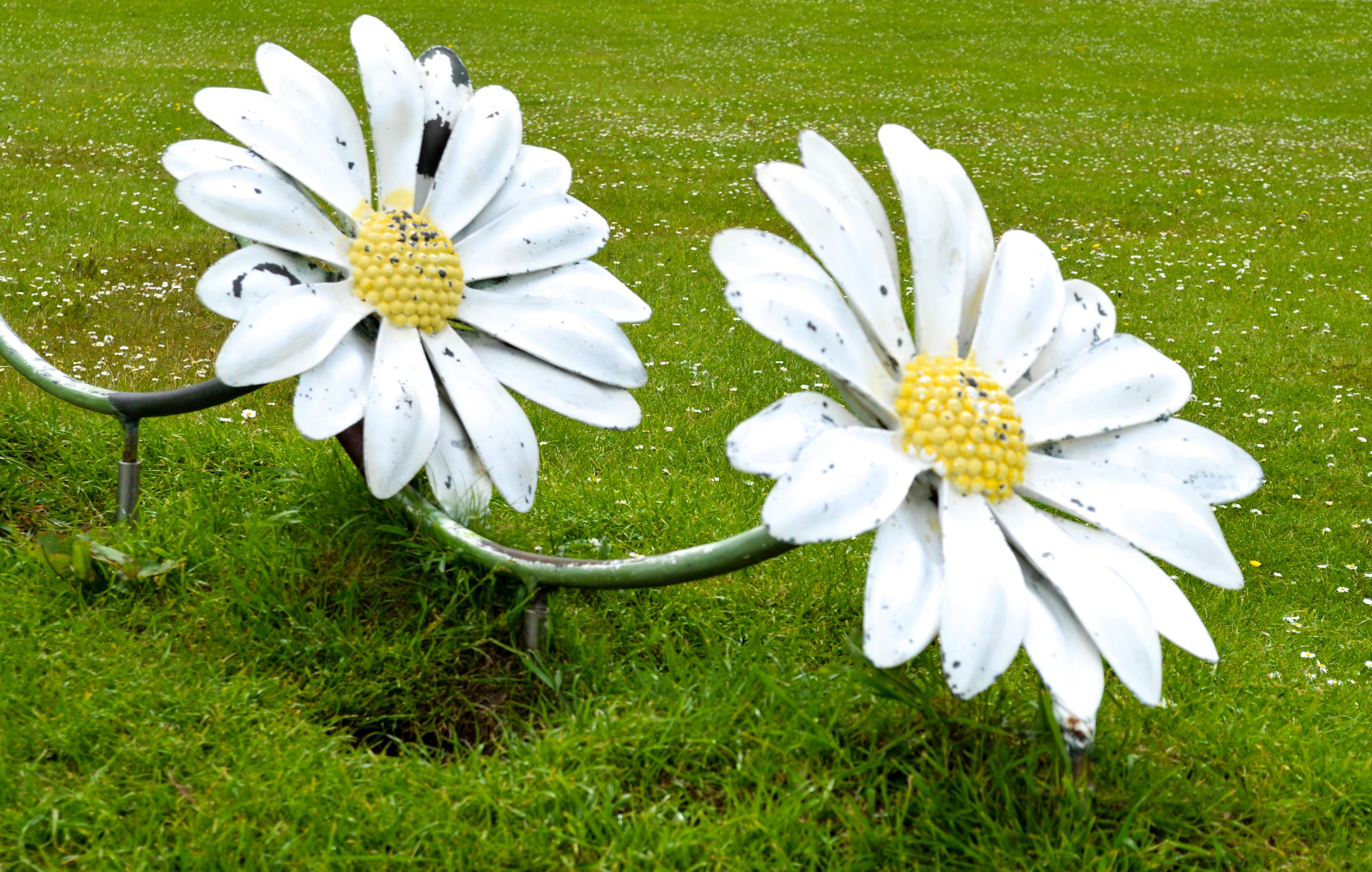 Double daisy sculpture discover bundoran tourist information double daisy sculpture damien mcginley 2015 06 01t2356560000 izmirmasajfo Image collections