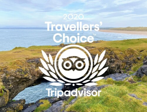 Fairy Bridges wins 2020 TripAdvisor Travellers' Choice Award