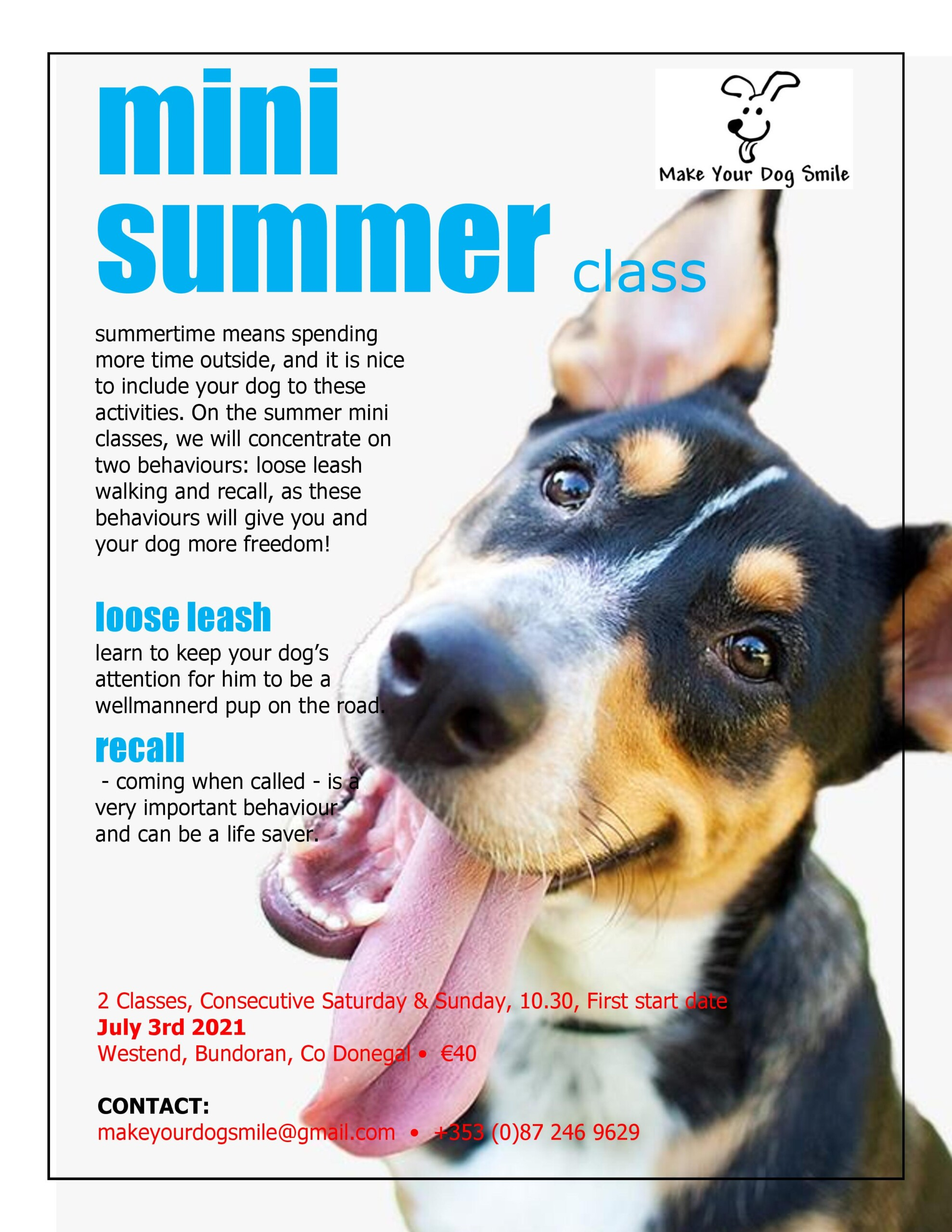 Mini Summer Class From Make Your Dog Smile